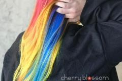 Rainbow Hair Color in Atlanta by Jessica at The Cherry Blossom Salon